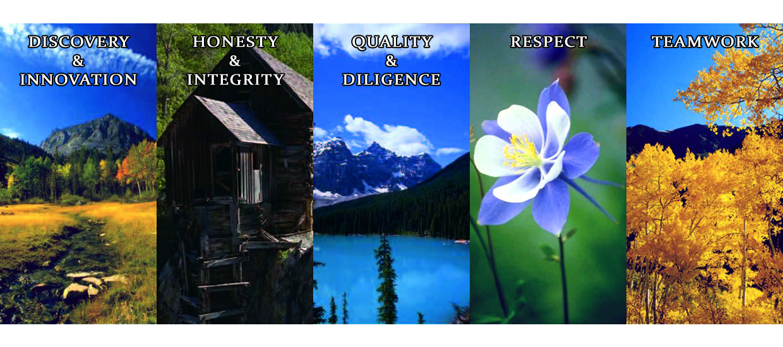 CPC Values